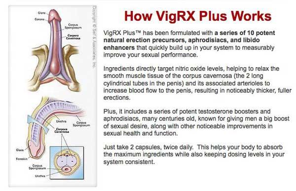 VigRX Plus Results After 1 Month