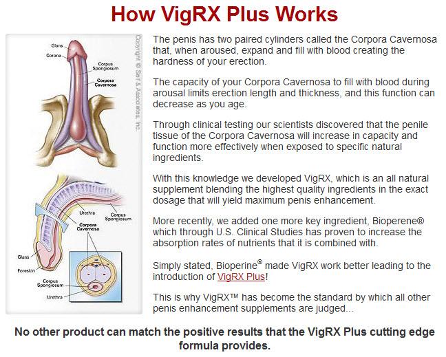 VigRX Plus Online Buy