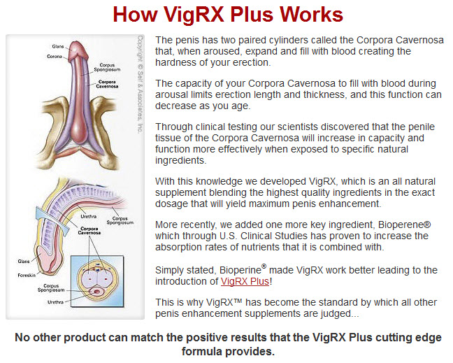 VigRX Plus When To Take